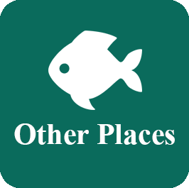 iconotherplaces