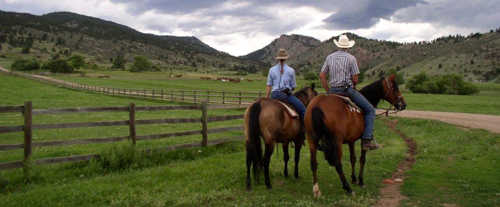 ranch-banner-1024x425