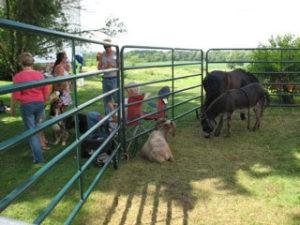 Petting zoo at Seidemann Family Reunion