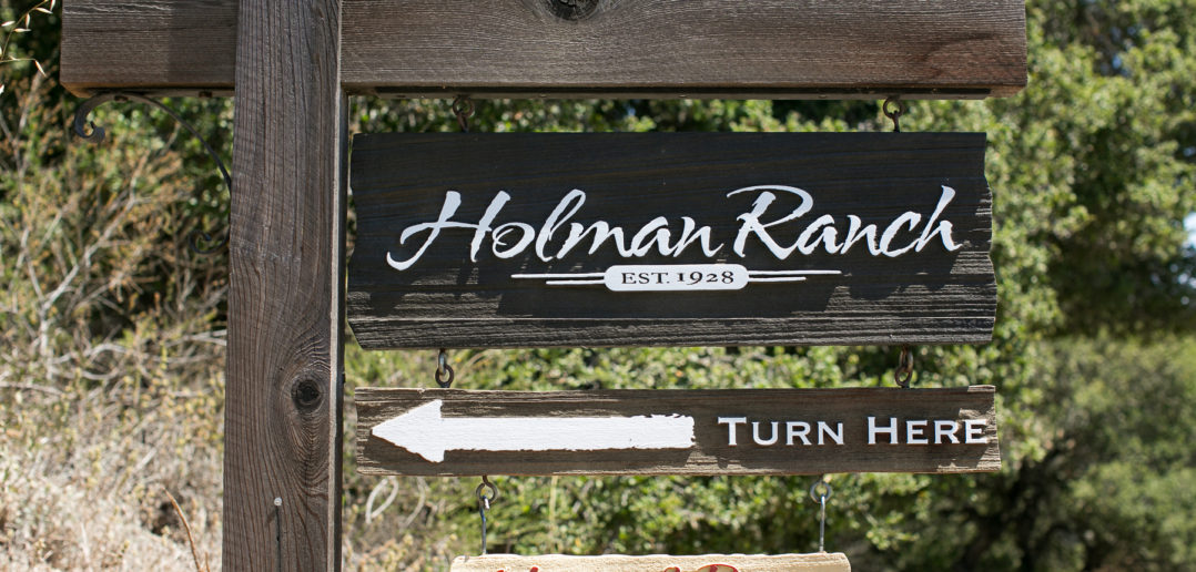 weddings-at-holman-ranch6