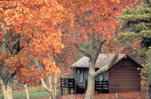 Give your reunion picturesque settings and room to roam in Shenandoah National Park.